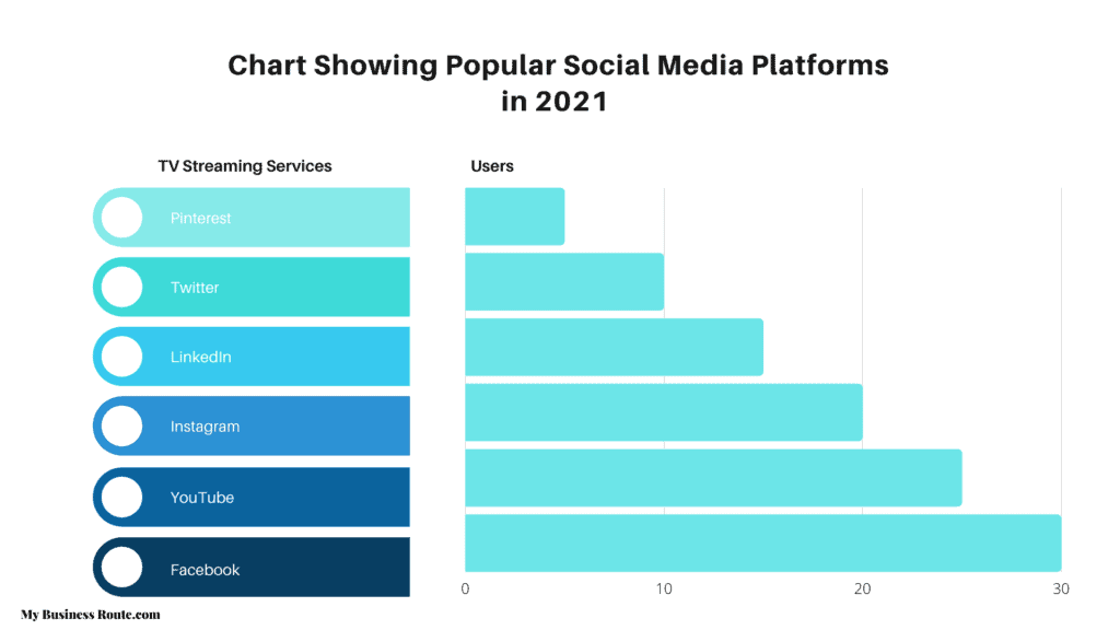 how to become a social media infuencer - chart showing popular social media platfroms